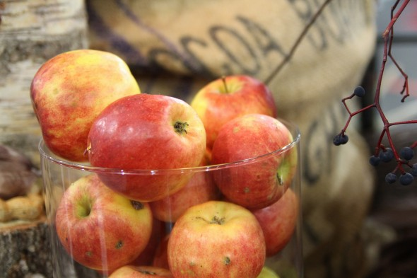 Rudens ēdienkartē āboli