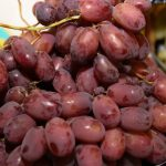 Uzbekistānas vīnogas