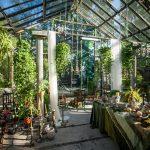 """Kafejnīcas """"Noslēpumu dārzs"""" apmeklētāji gaidīti ar kafijas biezumiem un domām par ilgtspējību"""